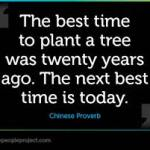 Best time to plant a tree...